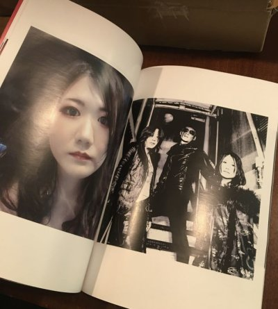 画像2: METALIC Photo Book