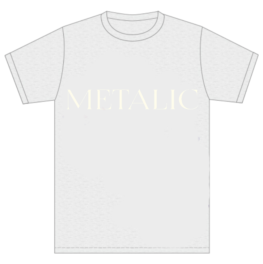 画像1: METALIC GRAY T-Shirts (1)